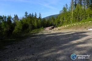 4.5 acre lot close to Arrow Lake in Nakusp 196907