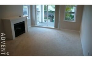 2 BEDROOM APARTMENT FOR RENT NEAR BRENTWOOD MALL. AVAILABLE MARC