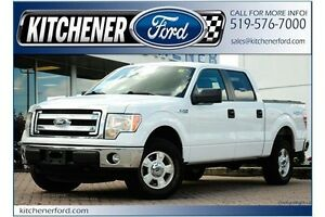 2014 Ford F-150 XLT/4X4/5.0L/V8/SIRIUS/FOG LIGHTS/PRIVACY GLASS