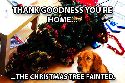 Funny Dog Fridge Toolbox Magnet (3 x 2) Christmas Tree Fainted Home Trouble Art