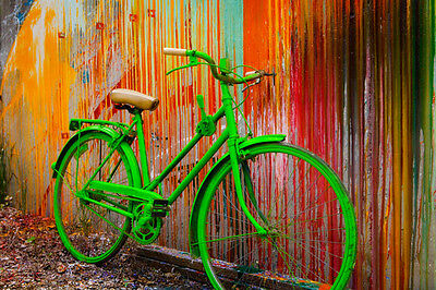 Go Green by Todd Van Fleet Bike Cycling Bicycle Flowers Canvas Giclee 24x36