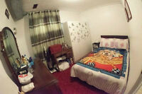 Basement Apt Furnished/UTILITIED INCLUDED 6 Midvale Road