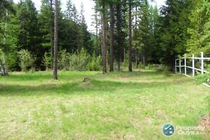 Fully serviced vacant lot in Salmo ID 196925