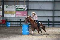 Six Moon Guy -Barrel Horse For Sale