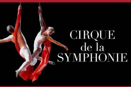 Sydney Symphony with cirque du performers Allambie Heights Manly Area Preview