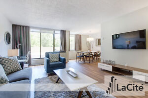 2 BEDROOM FURNISHED APARTMENT - Downtown Montreal / Plateau