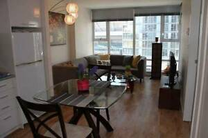 Fully Furnished Cozy Apartment in Downtown