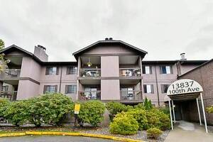 RENTALS ALLOWED! Fully Renovated UNIT W/ HUGE Private Backyard!!
