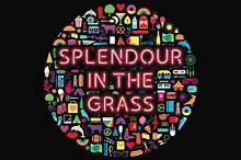 Splendour in the Grass Camping Ticket Wooyung Tweed Heads Area Preview