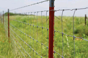 WANTED T-Bar fence Poles 6' or 8' for Cattle/ Farm Fencing