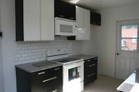 Very Lighted Renovated Upper Duplex in NDG Montreal