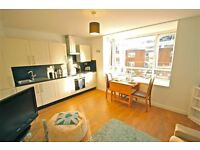 Beautiful Two Bedroom apartment by Brighton Station - Electric, Water and Internet included!