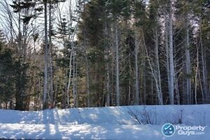15 minutes from city center. Build your dream home here!!