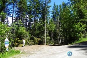 fully serviced 3.9 acre lot in Nelson ID 197245