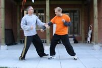 Traditional kung-fu classes
