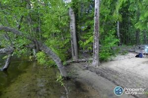 Waterfront vacant lot in Grand Forks ID 196919