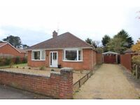 Spacious 2/3 bedroom detached bungalow for rent in Kesgrave, Suffolk