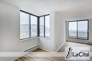Large 2 Bedroom (4.5) Apartment in the Heart of Downtown!