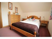 One pine double bed with blindcraft mattress