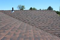 Need your roof replaced or repaired?