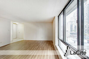 HUGE 3 BEDROOM APARTMENT for rent - Downtown Montreal / Plateau