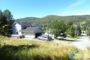 1/2 acre lot, stunning views, all services Fruitvale 196806