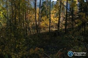 SOLD!! Lot 7 Phase 3 Pass Creek Heights Castlegar 196465