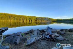 PRICE DROP - 19 Acres - 250ft Waterfront - Private Lake - FSBO