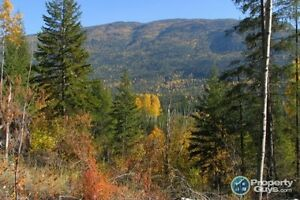 Lot 6 Phase 3 Pass Creek Heights Castlegar 196464