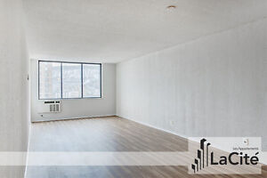 BACHELOR APARTMENT for rent – Montreal Plateau / Downtown