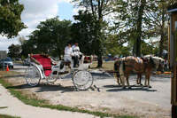 "Winery Tours by  ""Back-N-Time"" Horse drawn carriage services"
