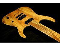 Custom Built Electric Guitar Siggery - Heresy 6 - SUPERB !!