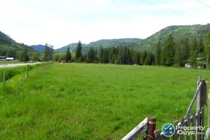 5 acres of level land with year round creek Fruitvale ID 196958