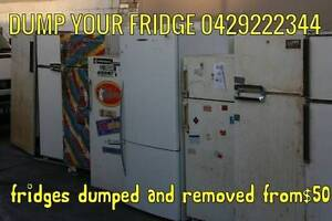 we can remove and dump your fridge dishwasher oven dryer Camperdown Inner Sydney Preview