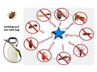 PEST CONTROL: FREE QUOTES ALL ROUND LONDON