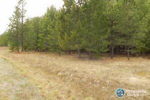 Private 2.5 acres in Eagle Ridge Grand Forks 196587