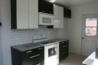 Very lighted renovated upper Duplex In NDG