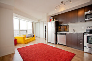 Beautiful and spacious 1 bedroom condo on king west Liberty vill