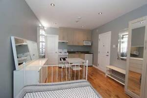 Lease Transfer for Dec. 19th, Renovated, Fully Furnished Studio