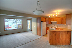 3 bed, 2.5 bath, den, full basement, garage: Oriole Park Duplex