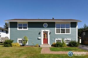 NEW PRICE! Well cared for 4 bedroom, completely fenced yard.