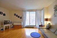 1 MONTH FREE- BEAUTIFUL LARGE APARTMENT- RENOVATED - SOUTH END