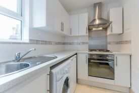 Beautiful huge studio flat to let in Streatham Hill. Furnished or part-furnished.