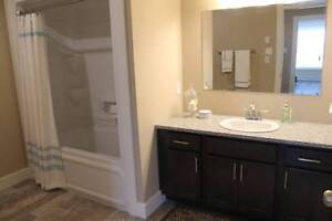 $1700 / 3br - 1200ft2 - 3 BR Luxurious apartment for rent SJ,NB