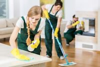 Professional Cleaner for Small Family Hotel