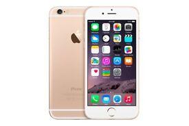 iPhone 6 - 64GB - Gold - 1 Year