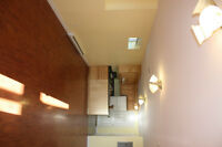 1 Bdr all utilities incl, washer/dryer in unit, downtown $750