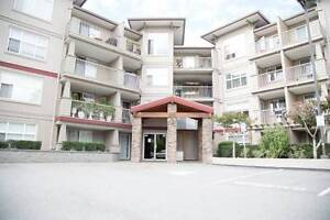*Price Reduced to Sell* Modern 1 bdrm Apartment