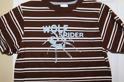 GYMBOREE ~ Brown Stripe Short Sleeve Tee Shirt Top ~ Wolf Spider ~ kid Size 4 - Brown Wolf Spider