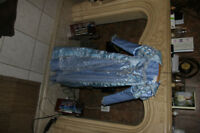 Authentic Cinderella Custume